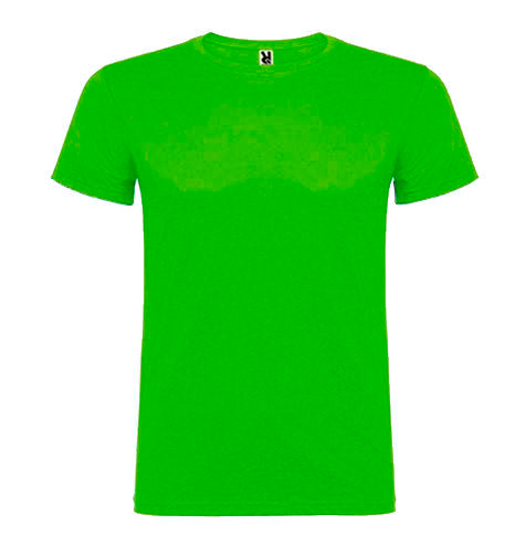 Camiseta 100% algodón manga corta 155 gr verde 2- RGregalos