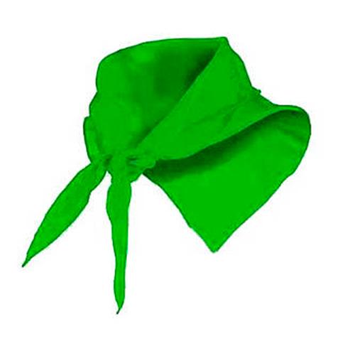 Pañuelo fino triangular verde - RGregalos