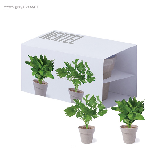 Macetero biodegradable 2 piezas - RG regalos publicitarios