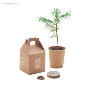Macetero-cartón-semillas-pino-RG-regalos-personalizados
